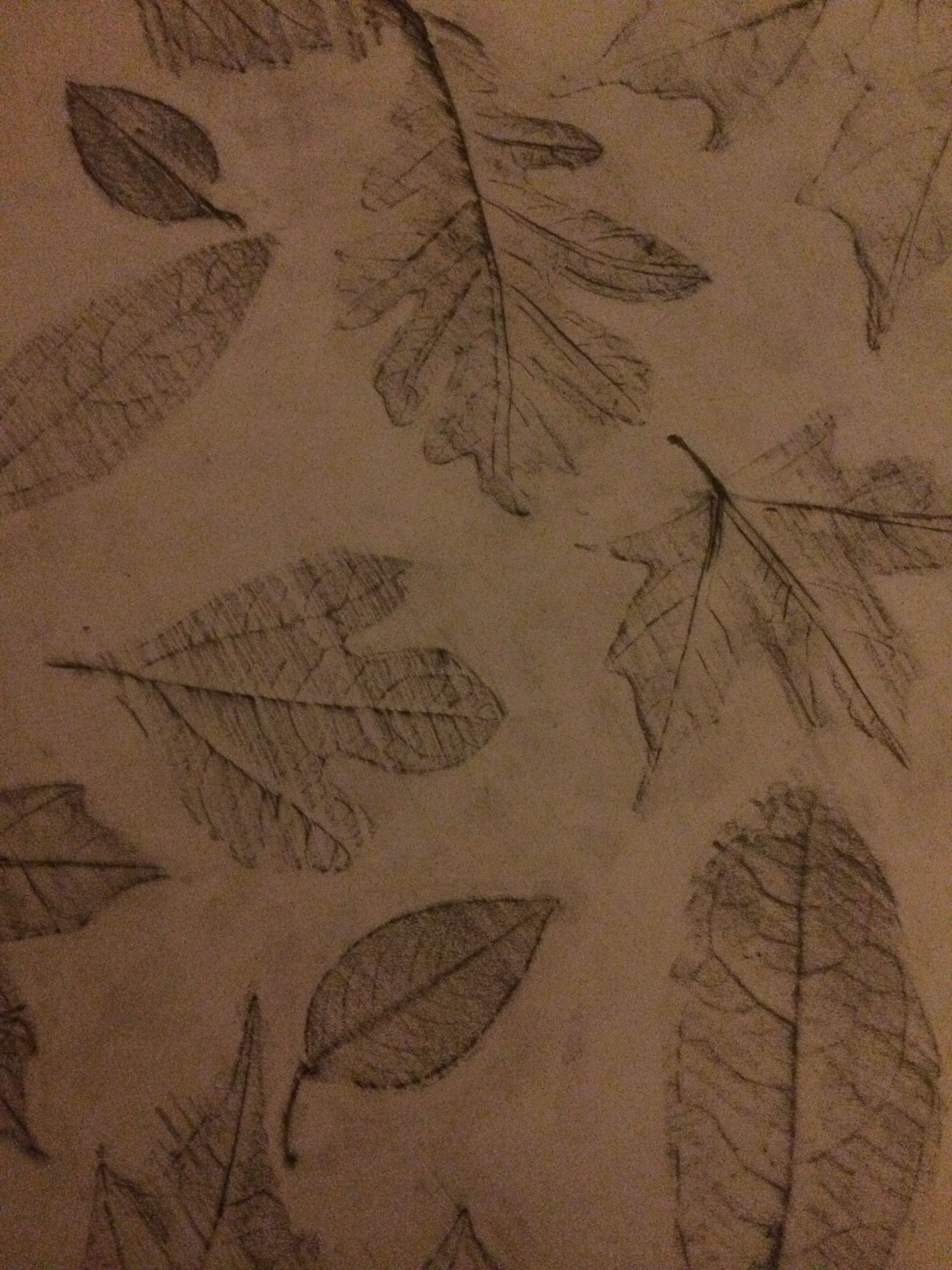 Take leaves and place under paper. Take pencil over top of the paper and color over the leaf image underneath. A penciled leaf will appear. Erase extra lead on paper to leave a beautiful masterpiece.