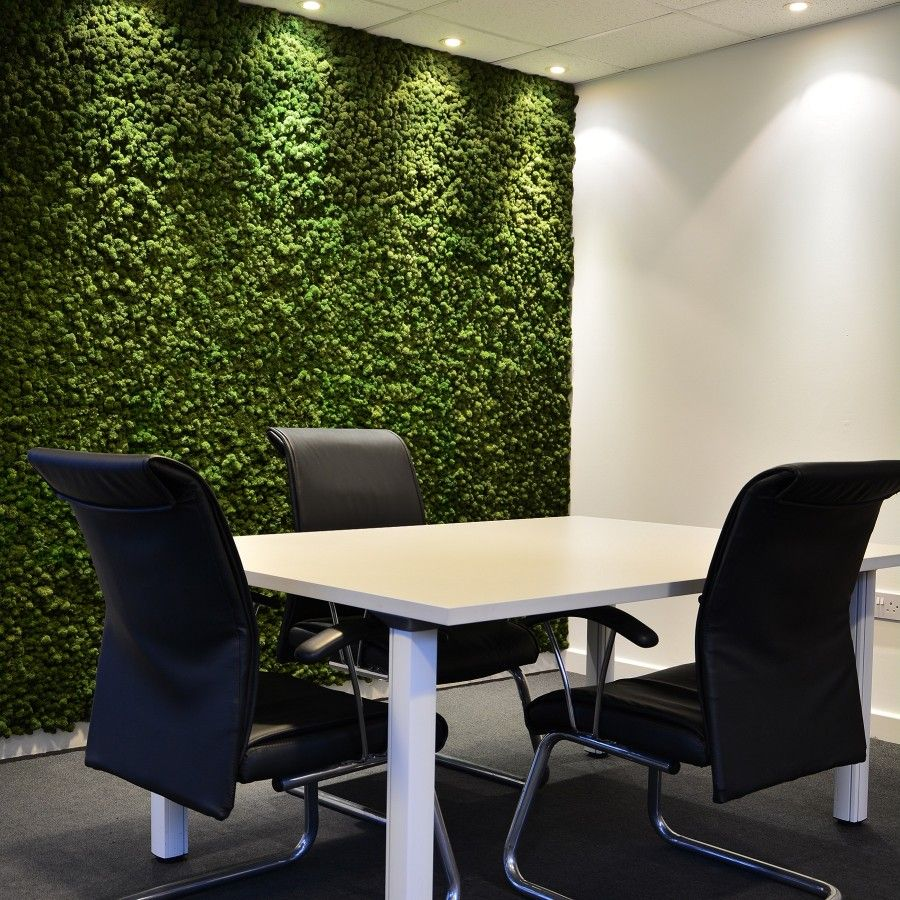A Preserved Moss Wall Acts As Brilliant Sound Proofing U0026 Theyu0027re  Maintenance Free.