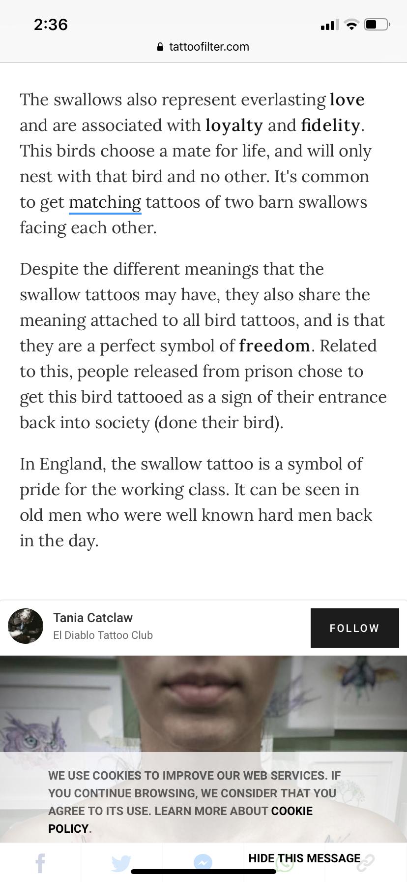 17 Tattoo Fin Ideas Tattoos Swallow Tattoo Nautical Tattoo