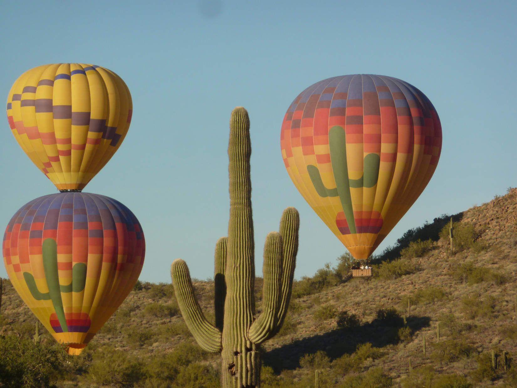 12 actually great phoenix date ideas | arizona trip | pinterest