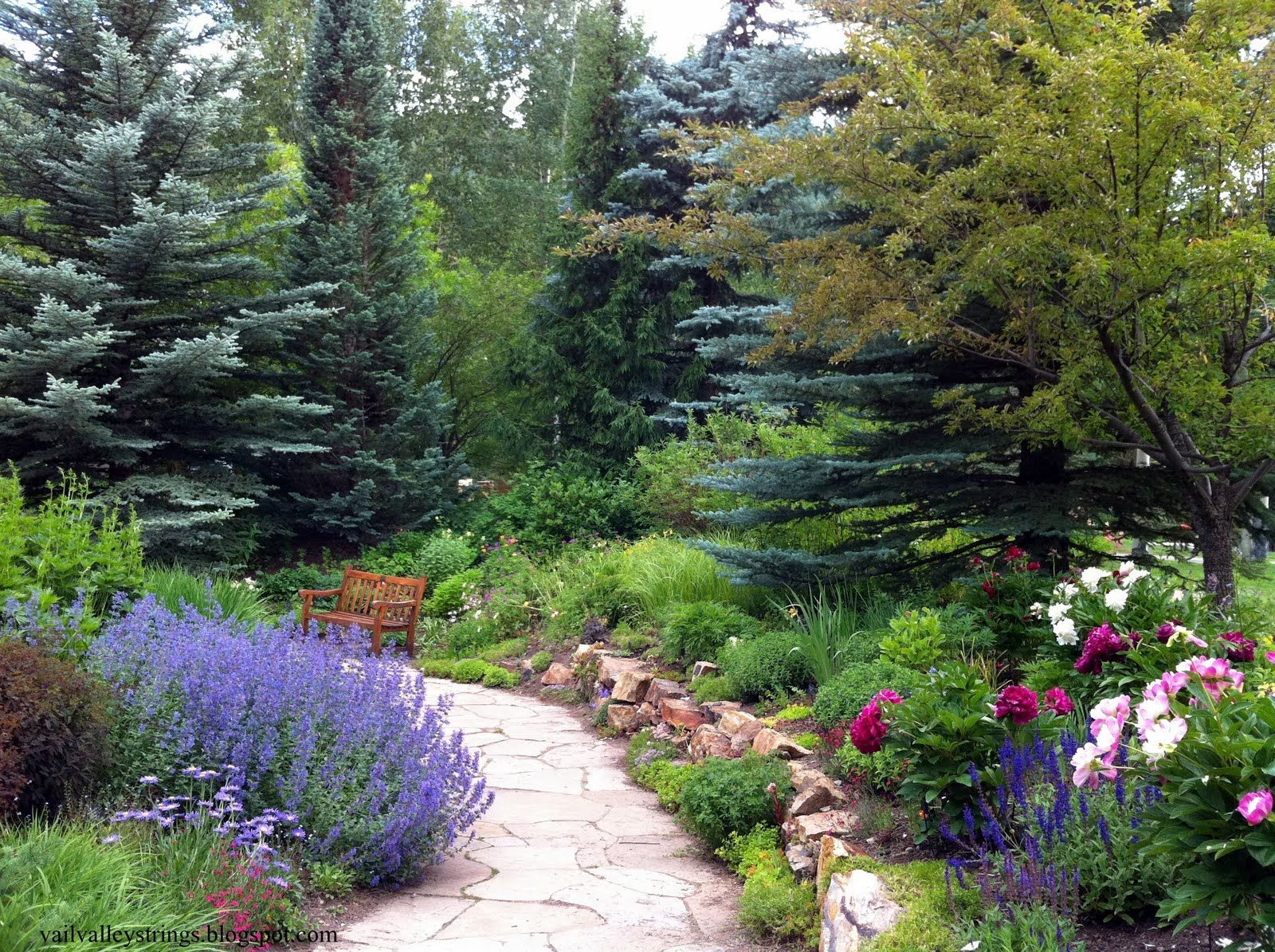 DHM Design - Betty Ford Alpine Gardens, Vail, Colorado #dhmdesign #landscapearchitecture