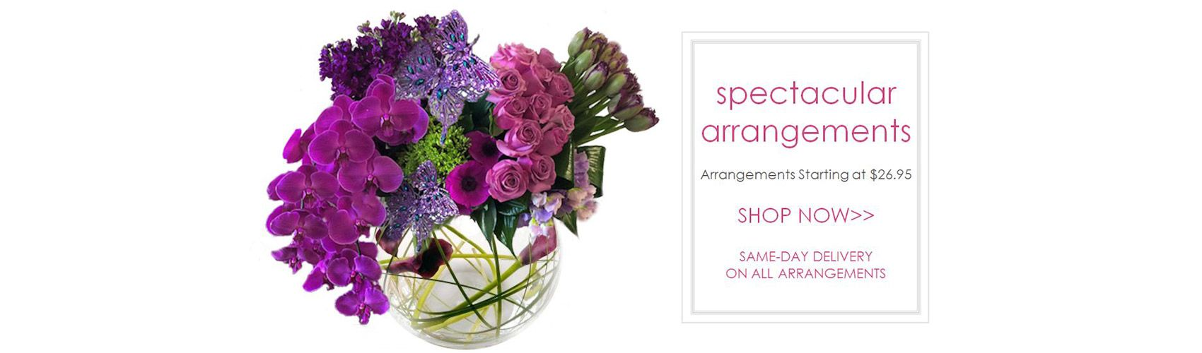 Order Flowers Online Shop Florists And Sending Flower In Dubai Uae