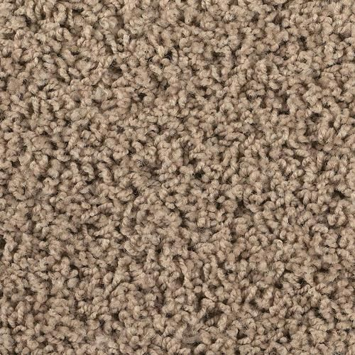 Shaw Vision Frieze Carpet 12ft Wide at Menards | Best ...