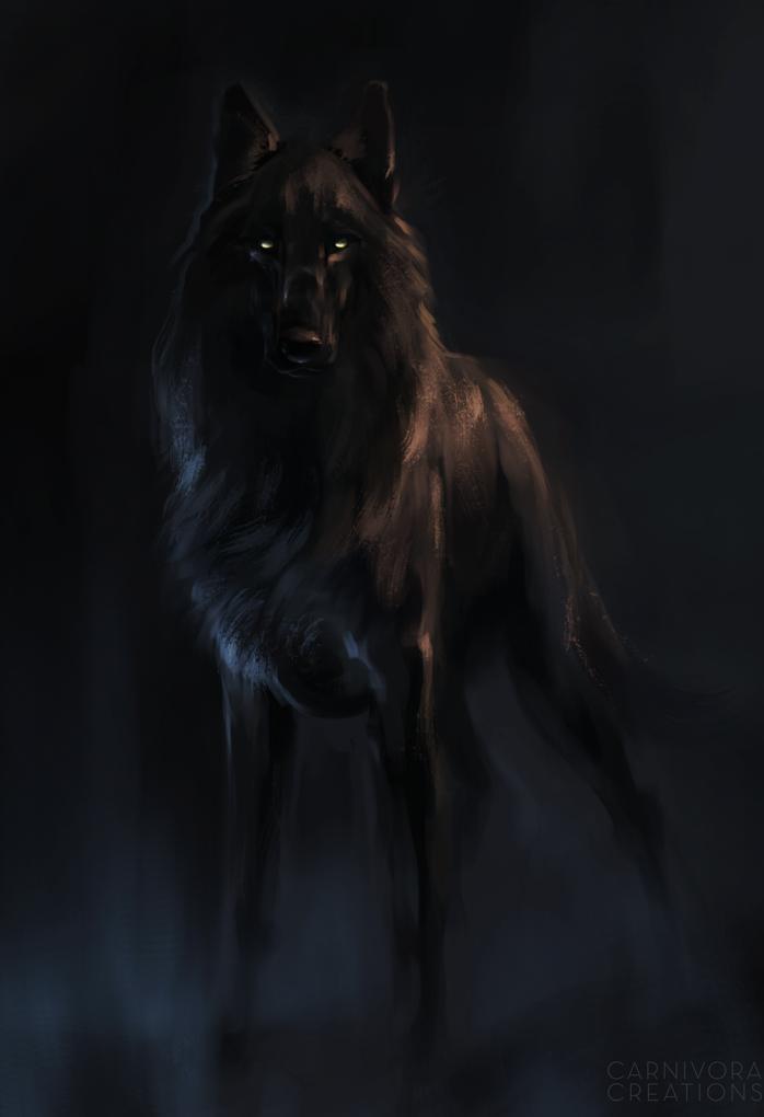 Black Dog By Kfcemployee Kresleni Vlci