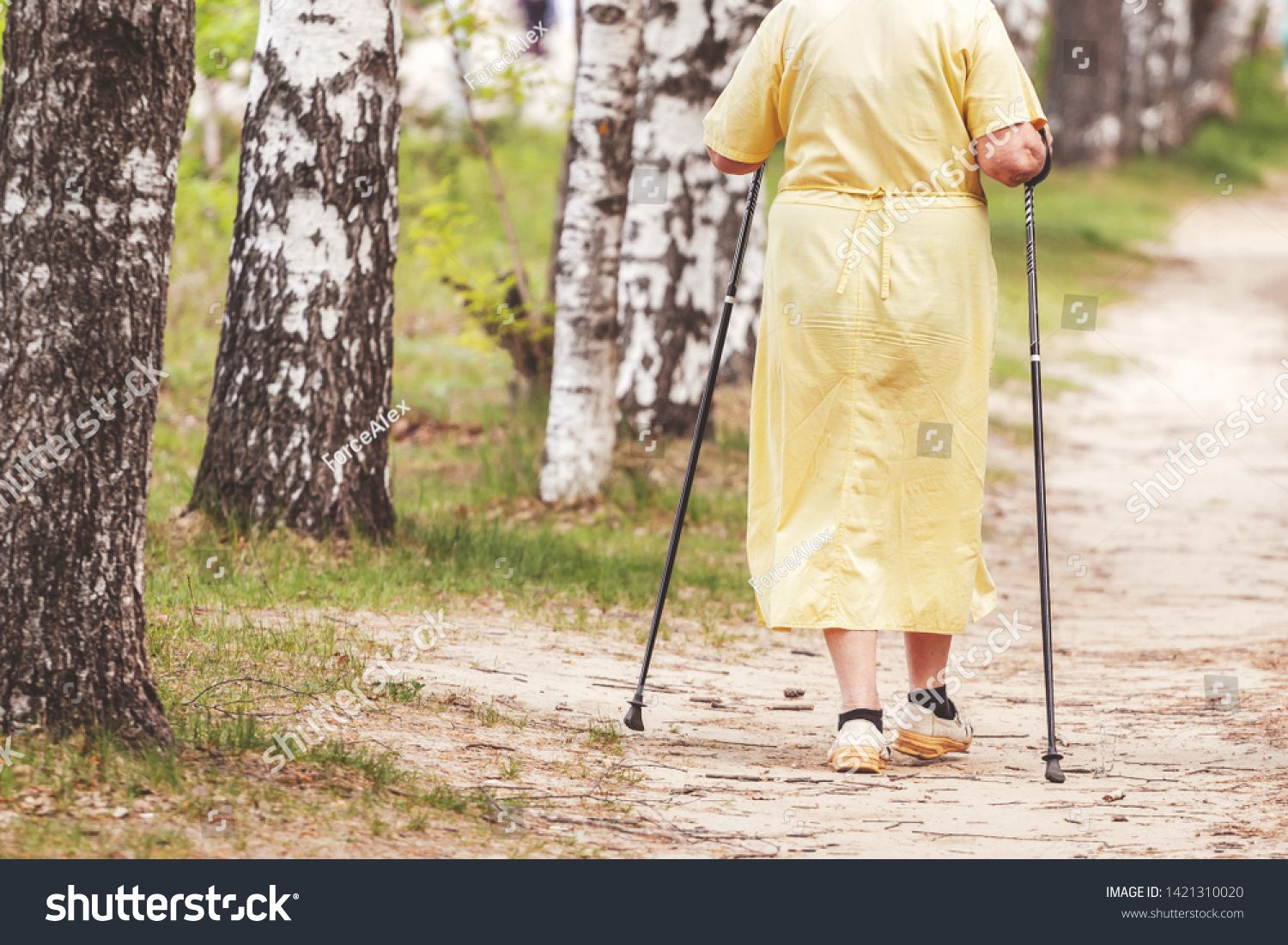 Woman Aged Involved In Nordic Walking View From The Back Elderly