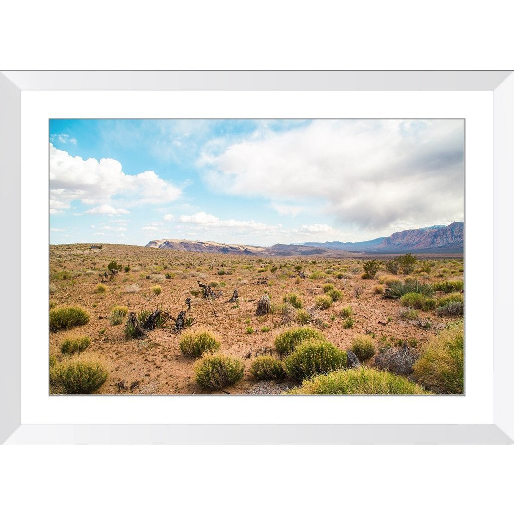 Desert Vibes   Framed Print
