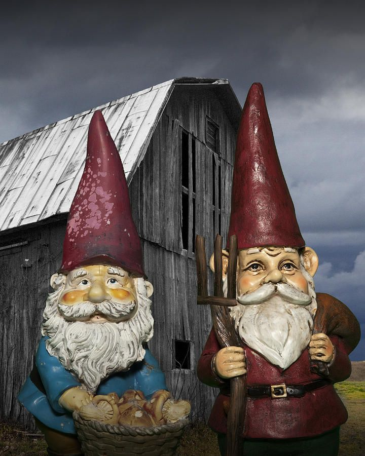 Superb American Gothic Garden Gnomes Standing In Front Of An Old Barn With  Pitchfork A Grant Wood Influenced Surreal Fantasy Photograph