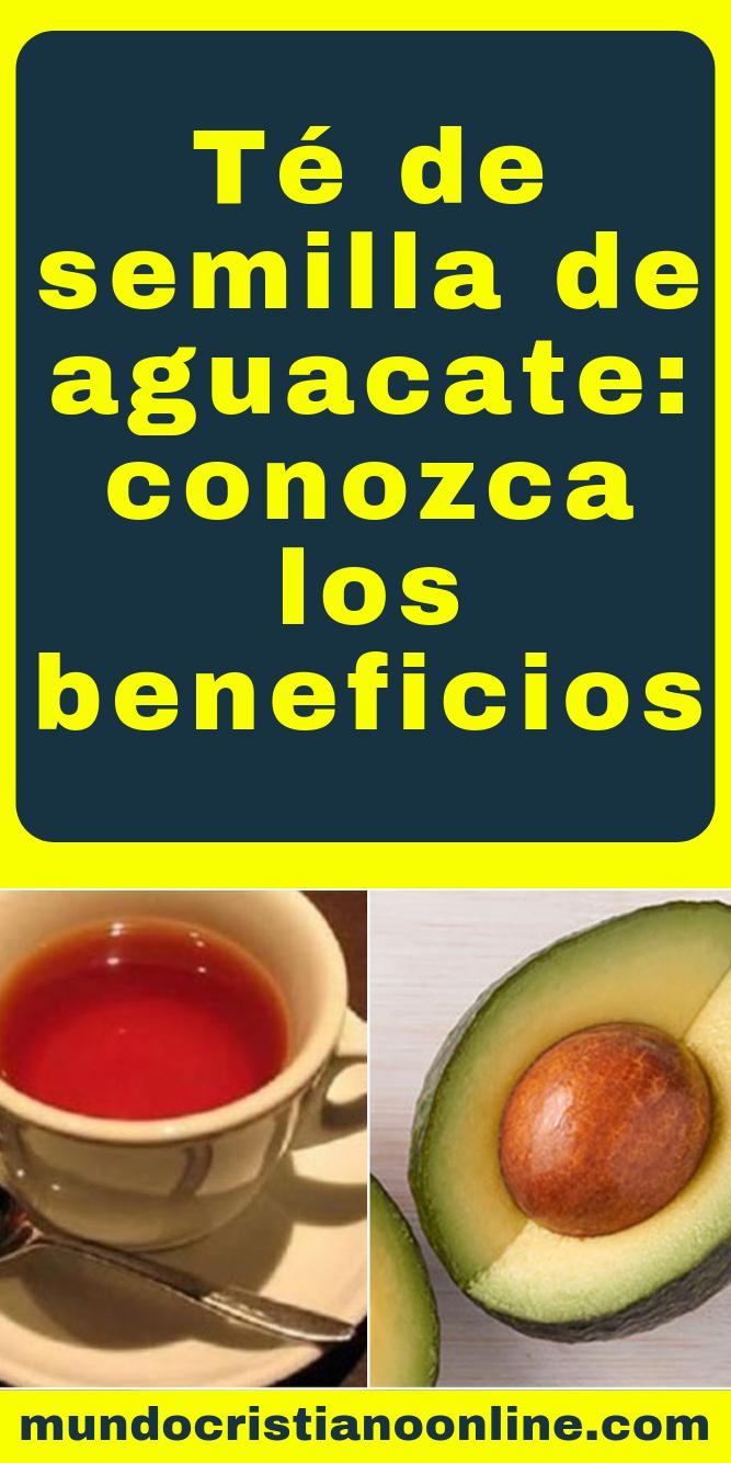 propiedades medicinales de la semilla del aguacate