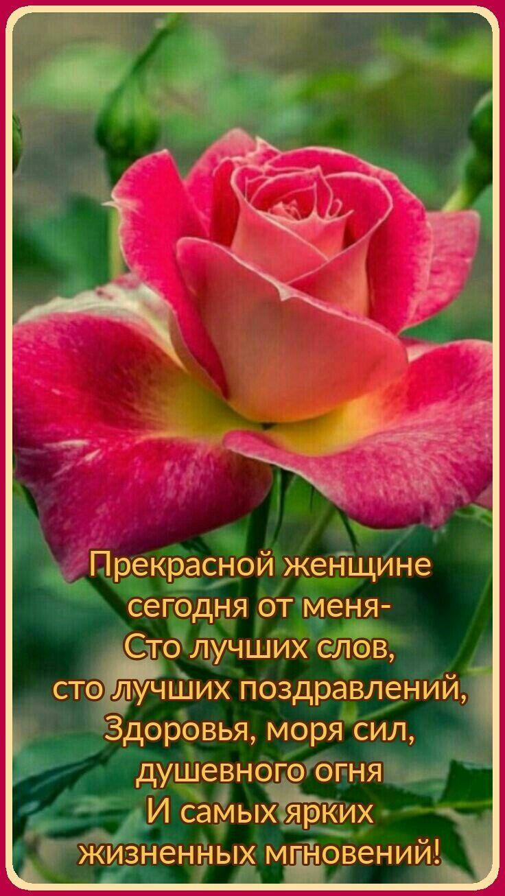 Pin By Yuliya Klimova On Dni Rozhdeniya Pozdravleniya Happy Birthday Good Wishes Happy Birthday Wishes Birthday Wishes Flowers