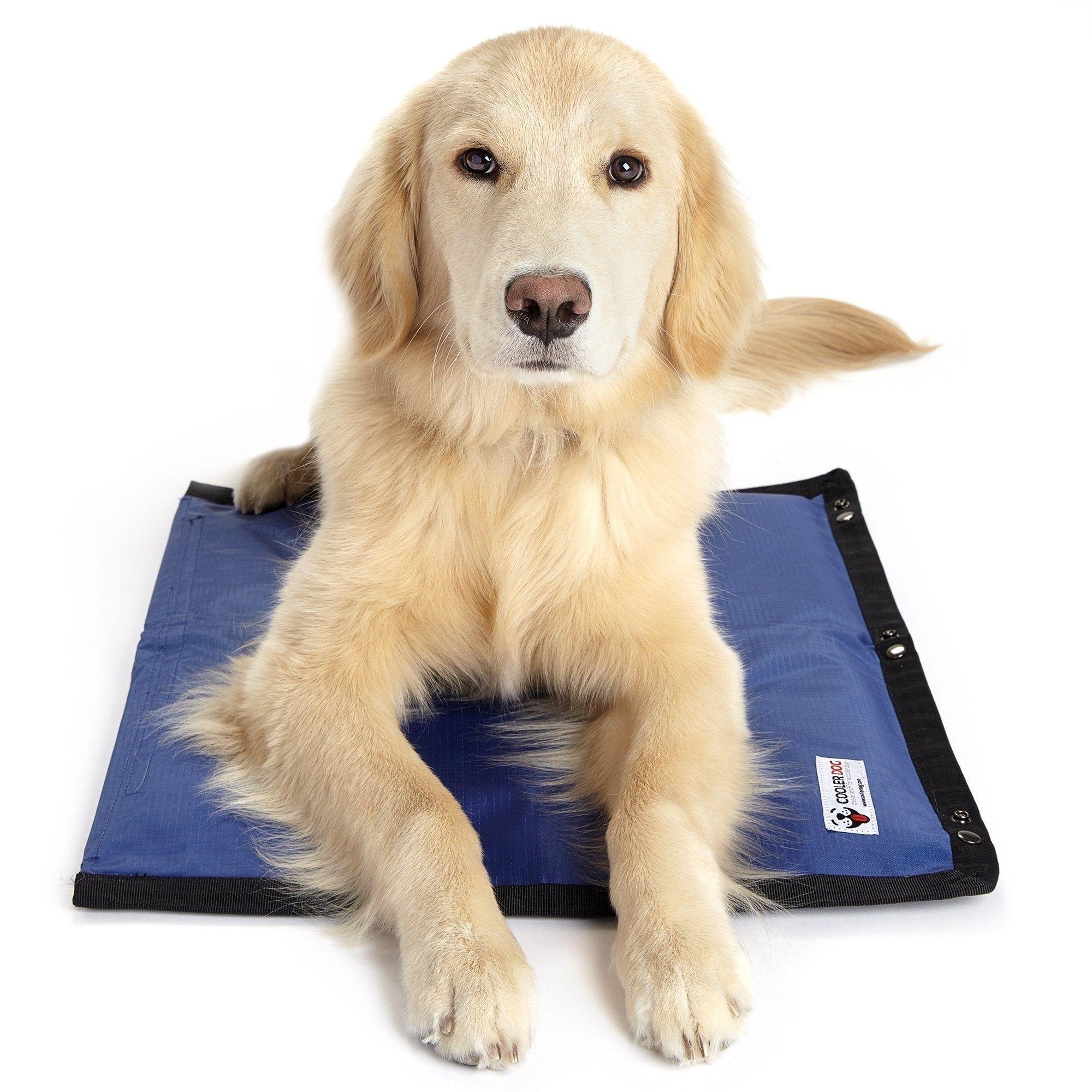 Coolerdog Hydro Cooling Mat Pet Mat Cool Pets Dog Cooling Vest