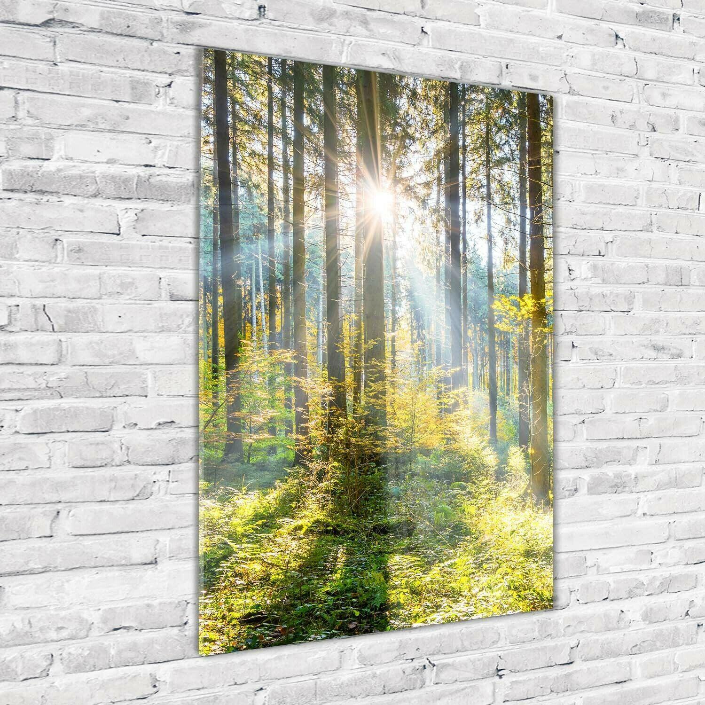 Wandbild Kunst Druck Auf Hart Glas Senkrecht 70x100 Sonne Im Wald Ebay In 2020 Wandbilder Kunstbilder Kunst Bilder