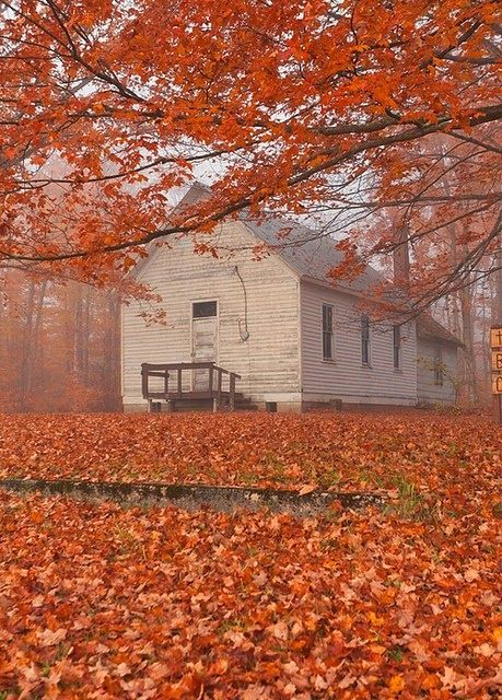 I could be happy in a house like this, especially in the fall.