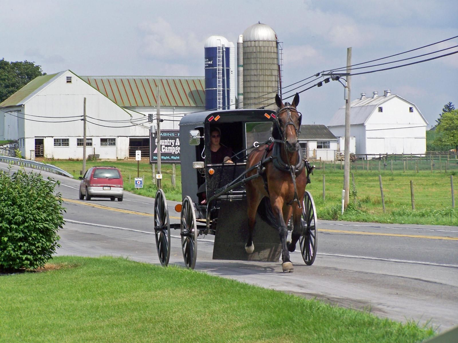 Bird In Hand Pa >> Bird In Hand Pa Amazing To See The Amish Way Of Life Lugares