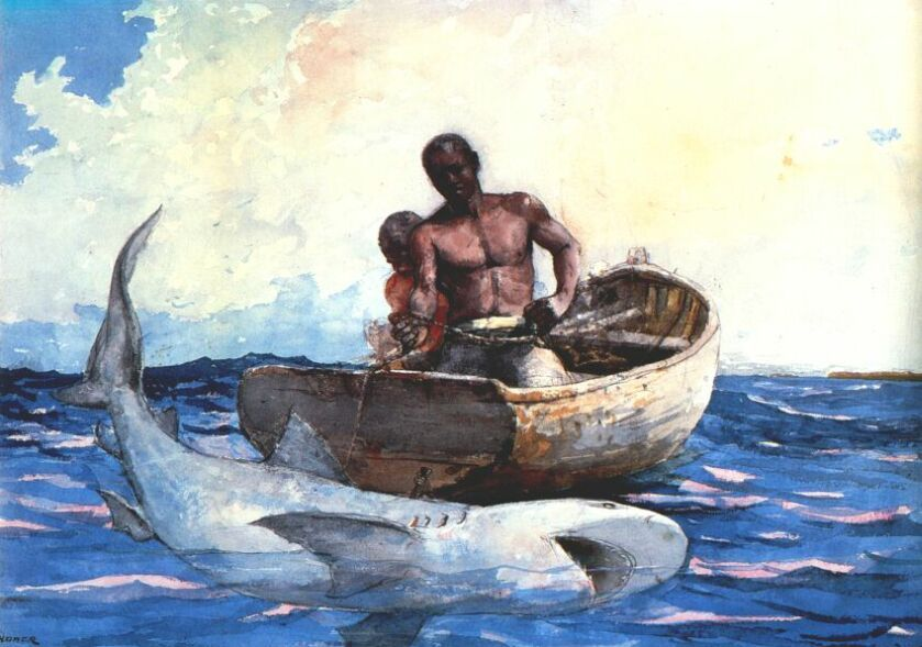Shark Fishing Winslow Homer Winslow Homer Paintings Winslow