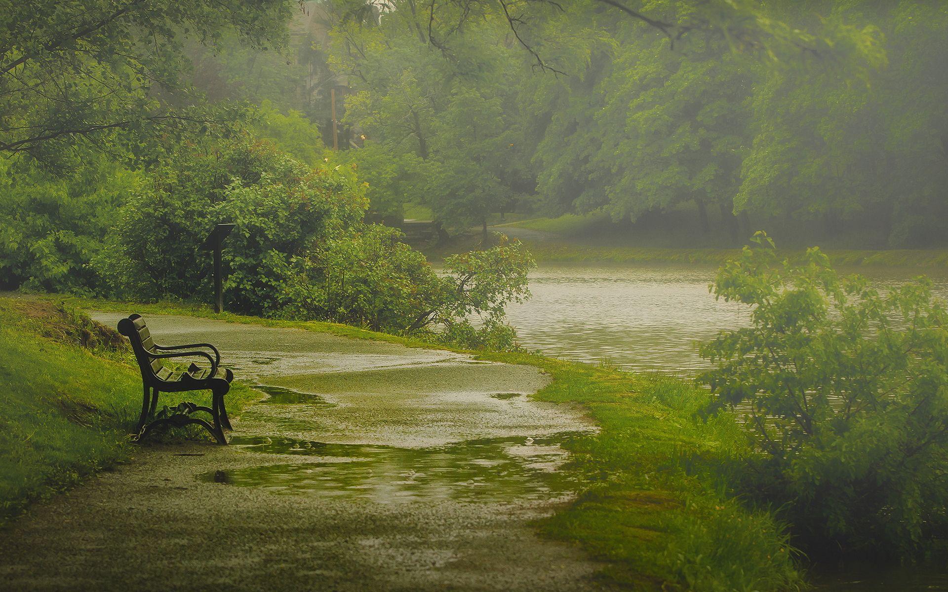 Rain Park Bench Rain Wallpapers Photography Inspiration Nature Nature Wallpaper