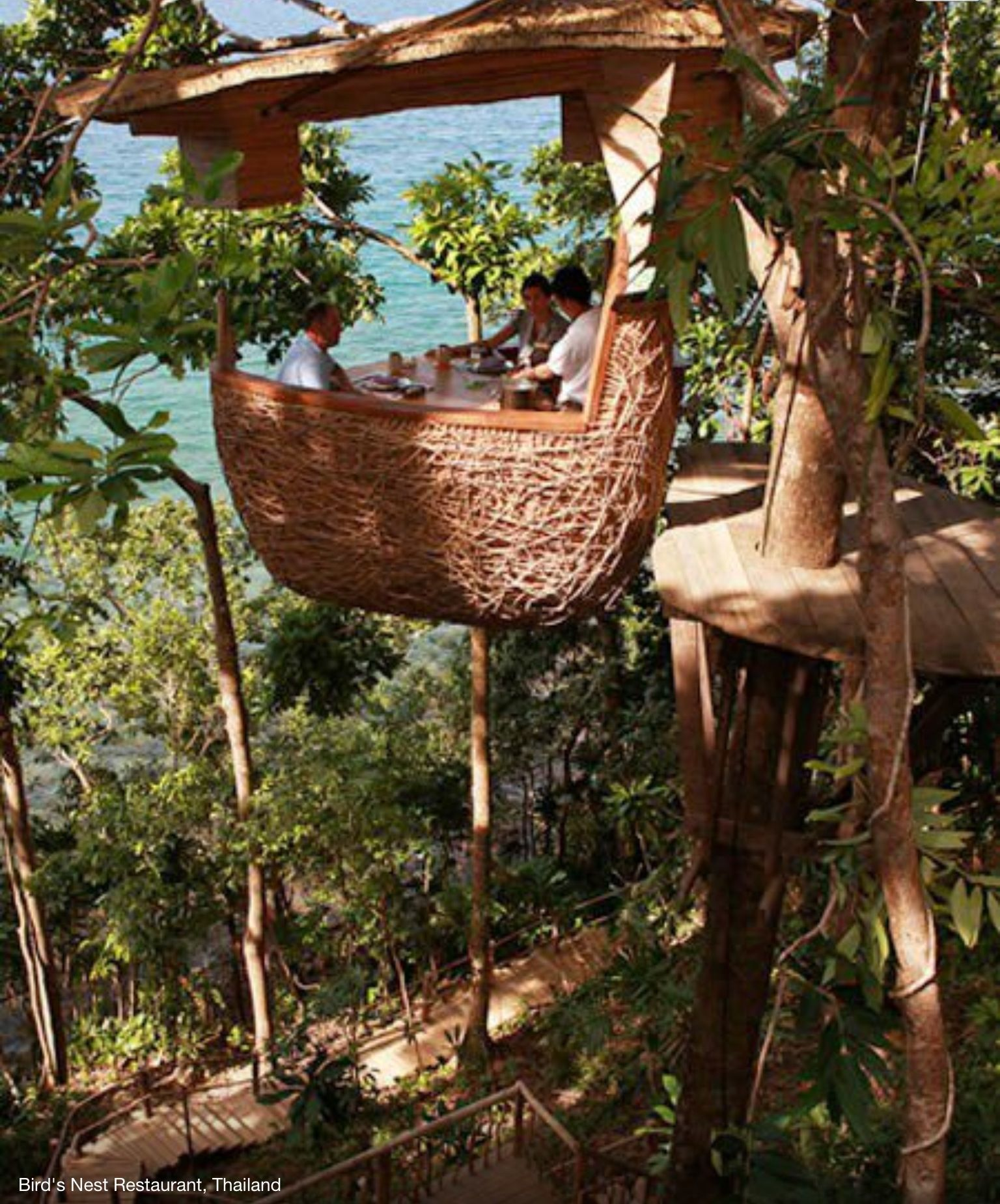 Birds Nest Restaurant Thailand Bucket List