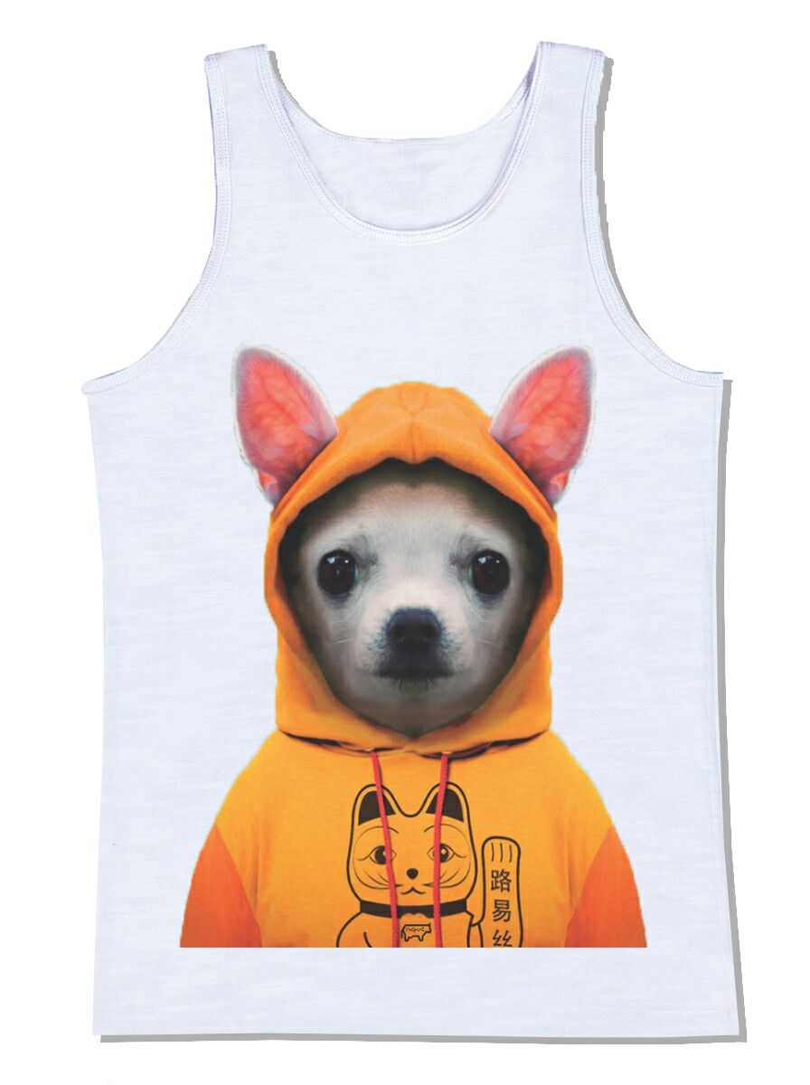camiseta cachorro moleton blusa chiuaua chihuahua animal pet animal de estimação