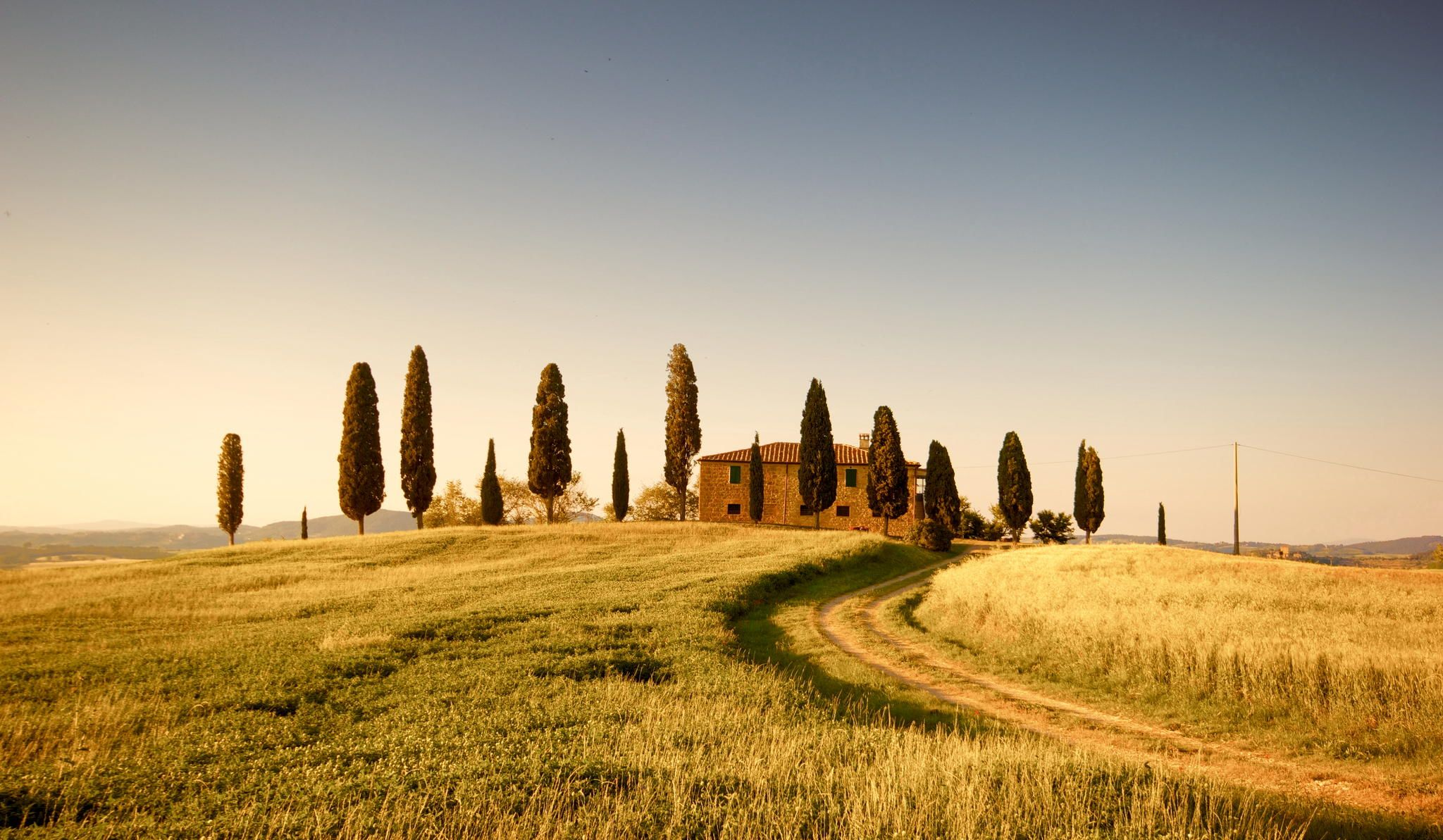 Standing in line -Cypress trees in Tuscany, Italy - by Francesco Riccardo Iacomino on 500px