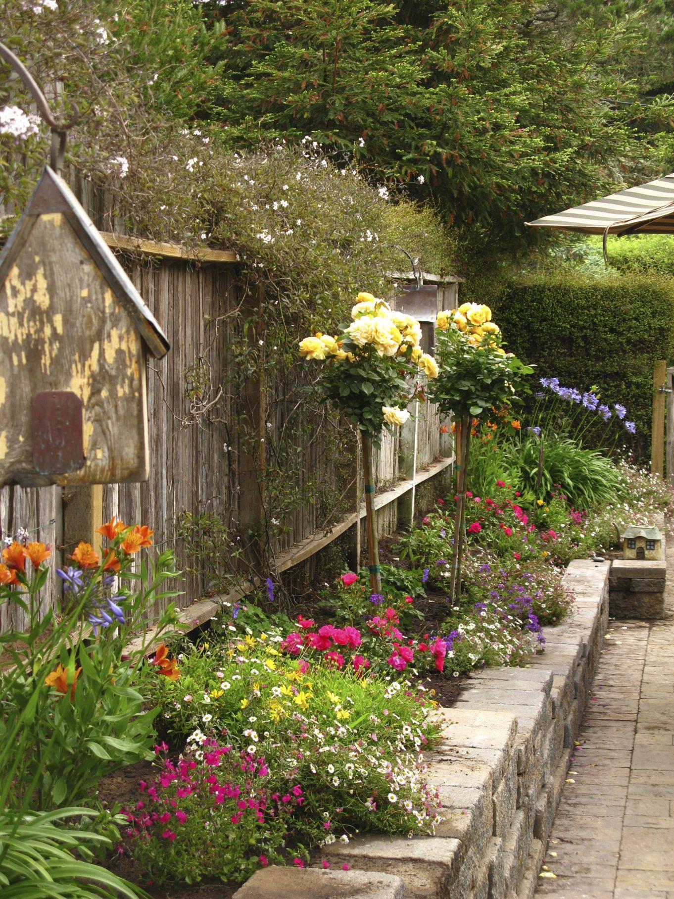 IMG_8955 | Gardening Ideas | Pinterest | Gardens and Landscaping ideas