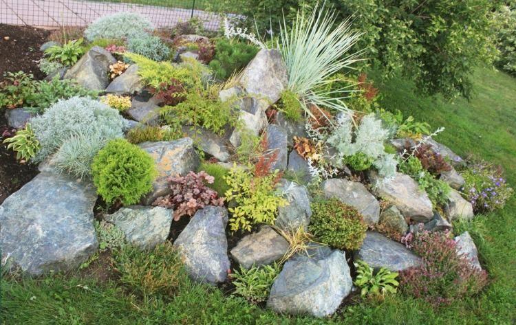 Steingarten pflanzen zwischen steinen auswahlen garten for Gartengestaltung zinkwanne