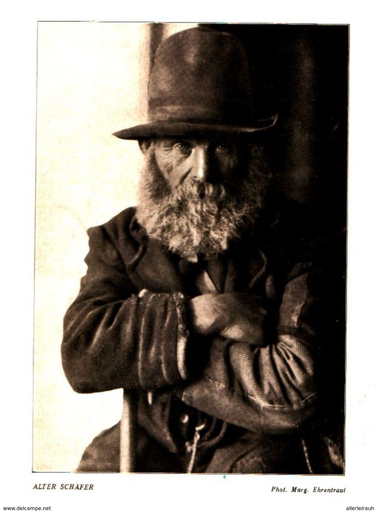 Alter Schafer Photo Marg Ehrentraut Druck Entnommen Aus Zeitschrift 1929 Artikelnummer 469955184 Zeitschriften Drucken Comic