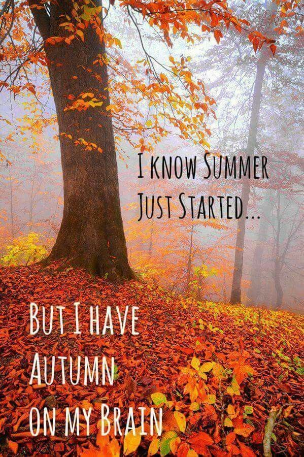 Pin by Lili on Fall images in 2020 Beautiful fall