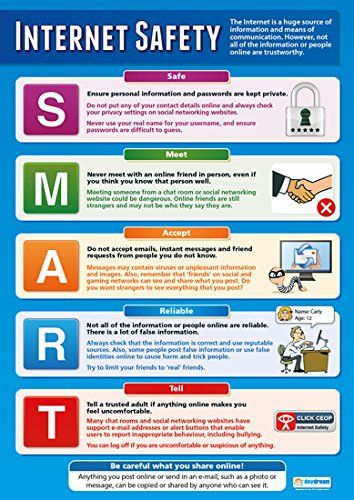 18 Poster Internet Safety Poster Educational Computing Chart For All Students By Daydream Education Internet Safety Safety Posters Health And Safety Poster