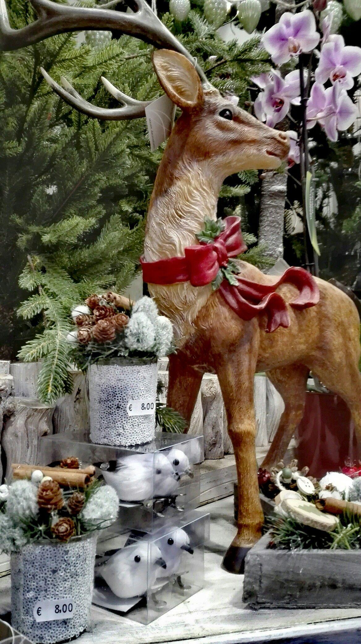Natale si avvicina: siete in cerca di idee per decorare la ...