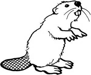 Beaver Stencils Bing Images With Images Coloring Pages For