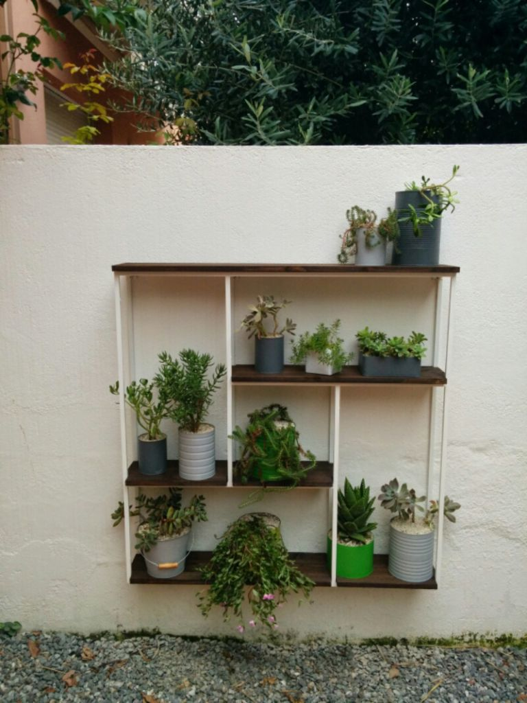 Estantera para plantas crasas Pinterest Plantas crasas