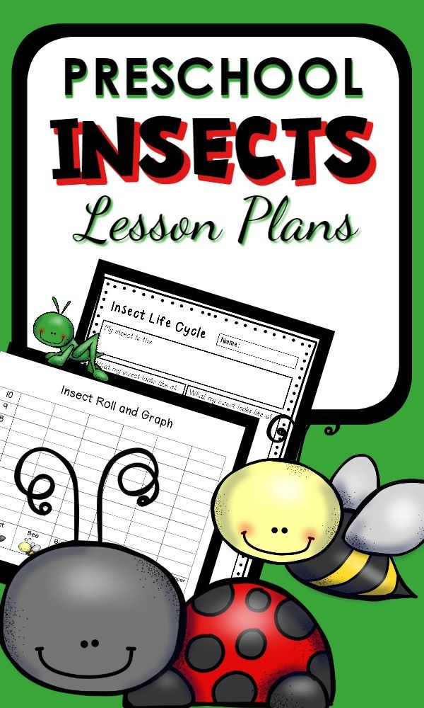 Image Result For Insects Lesson Plans Insects Theme Preschool Insects Preschool Preschool Bug Theme