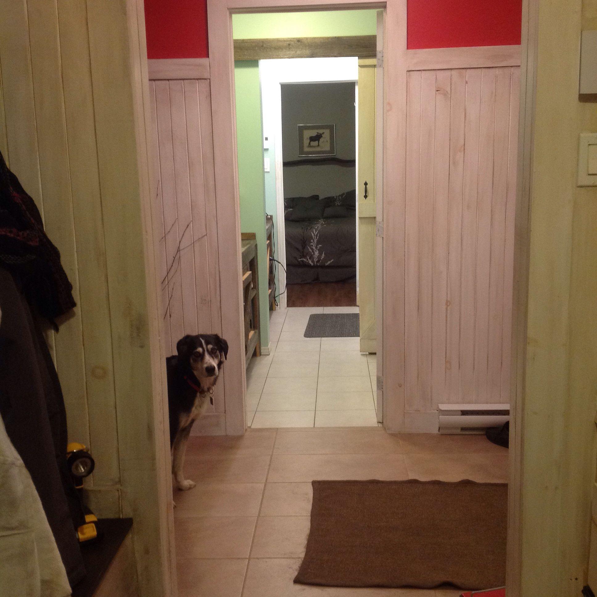 Mudroom through double entrance bathroom into guestroom....moose room