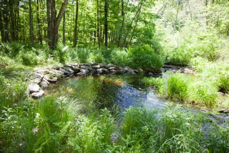 Backyard Streams - Cutter Hill Rd, Rindge, NH #nh #realestate