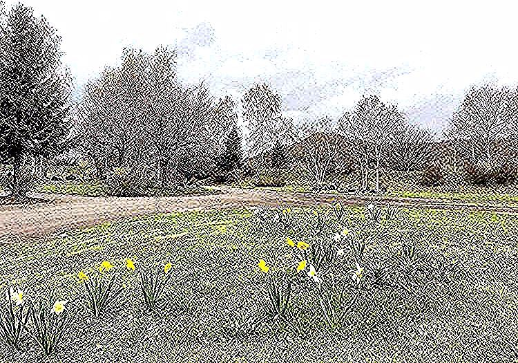 Spring has arrived at the Lakehouse estate. What a beautiful time of year to visit Lake Toya! 春暖花開的季節,北海道洞爺湖到處是美麗的櫻花、鬱金香和水仙花綻放,歡迎大家來北海道洞爺湖賞櫻花和呼吸新鮮的空氣。#春天 #春日 #櫻花 #北海道 #洞爺湖 #洞爺湖町 #Spring #Sakura #blossom #Hokkaido #goldenweek