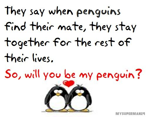 Penguin Love Quotes Inspiration Penguin Love  Quotes 3  Pinterest  Penguins