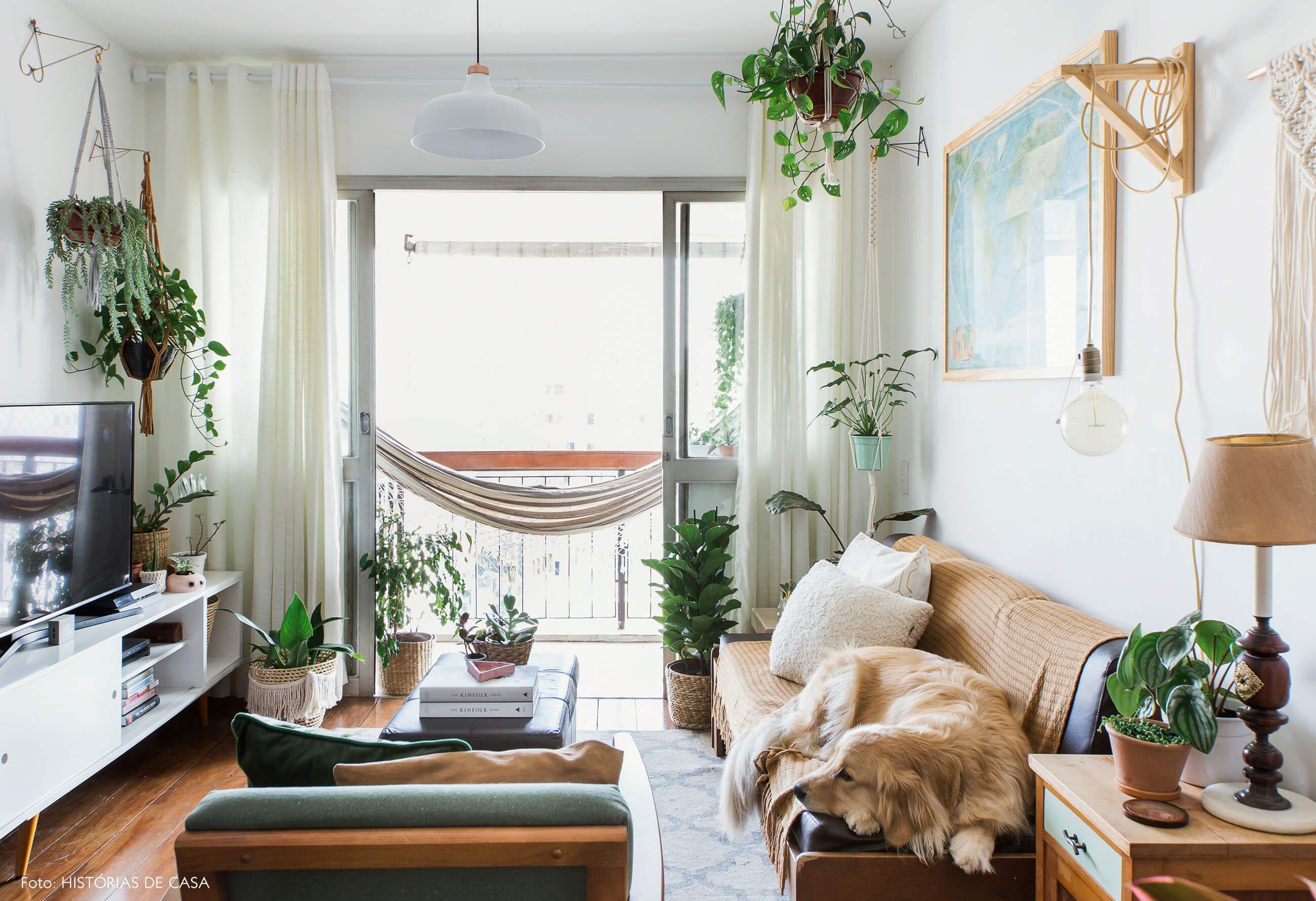 Apartamento pequeno e cheio de plantas sala de estar for Apartamentos minimalistas pequenos
