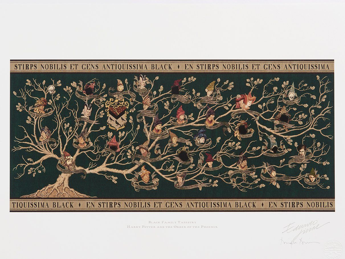 This Is How They Made The Black Family Tree In The Harry Potter Movies Harry Potter Family Tree Family Tree Art Family Tree Designs