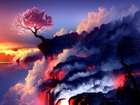 pretty flower with sunset cherry blossom tree and lava