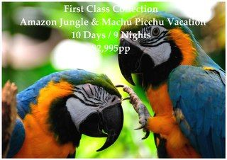 The Amazon Rainforest covers over 60% of Peru, but yet only 5% of its inhabitants occupy this area, and is considered one of the last frontiers on earth.  You will see monkeys, three-toed sloths, exotic birds, and many more animals in their natural habitat after visiting Lima, Cusco, the Sacred Valley of the Inca, and, of course, Machu Picchu.