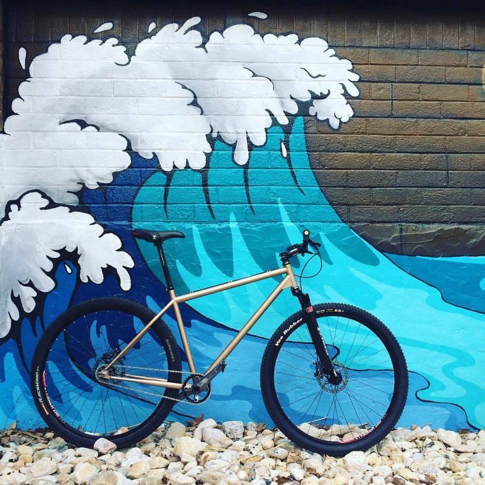 Vassago Jabberwocky 29 Mountain Bike Frame Single Speed Chris King ...