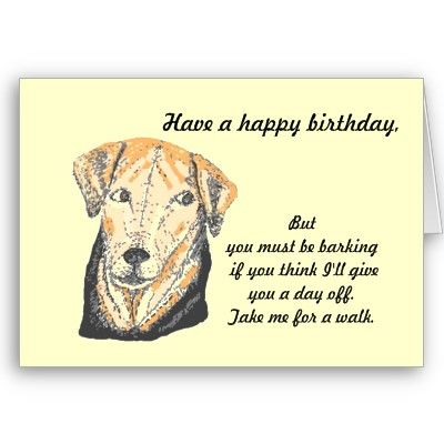 Birthday Card Cute And Funny Dog With Joke Card Zazzle Com Dog Birthday Card Funny Dogs Dog Birthday
