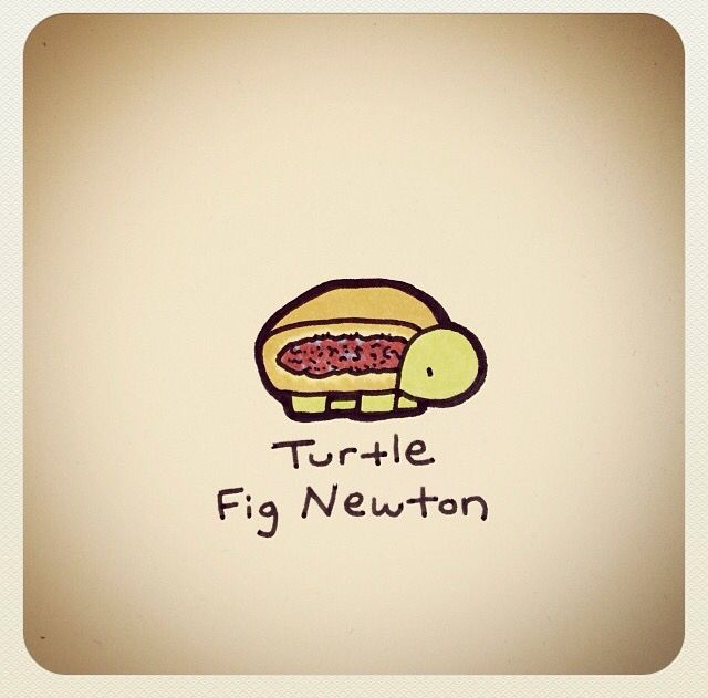 Turtle Fig Newton Cute Turtle Drawings Turtle Drawing Cartoon Turtle