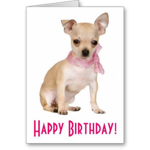 Happy Birthday Chihuahua Puppy Dog Greeting Card – Chihuahua Birthday Cards