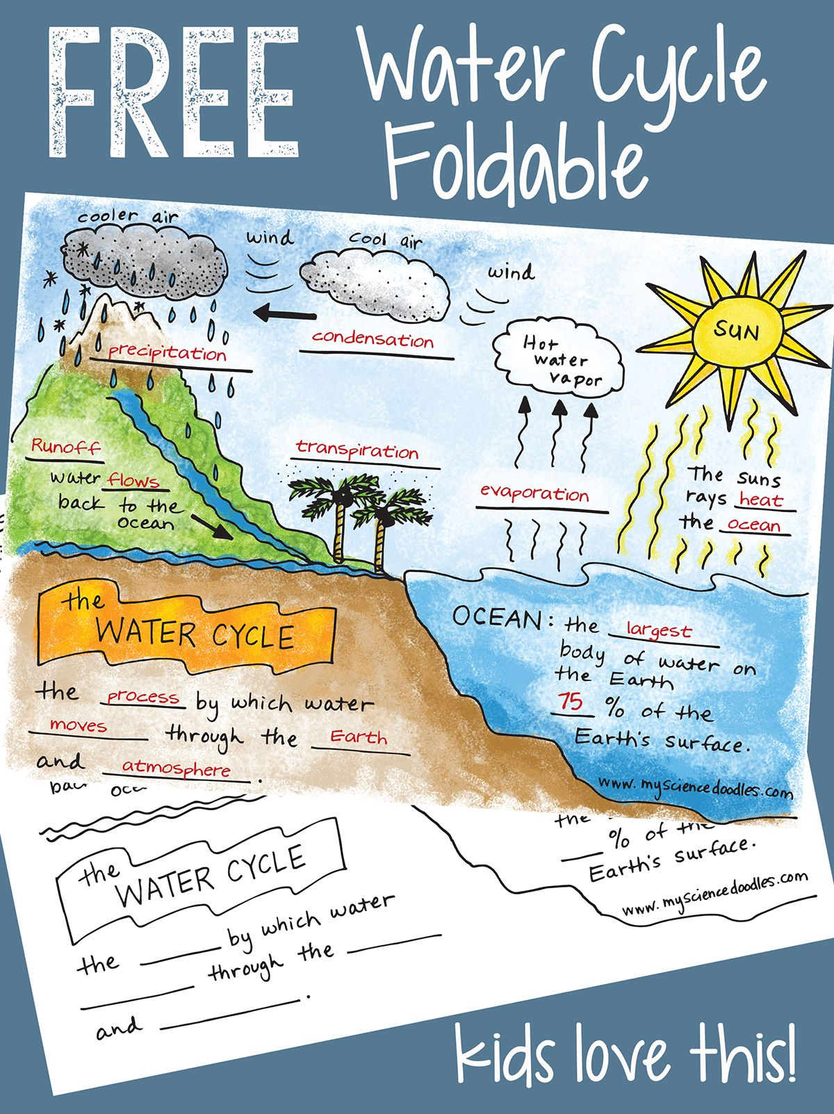 Science Doodle Free The Water Cycle Interactive Notebook Bundle Freebie
