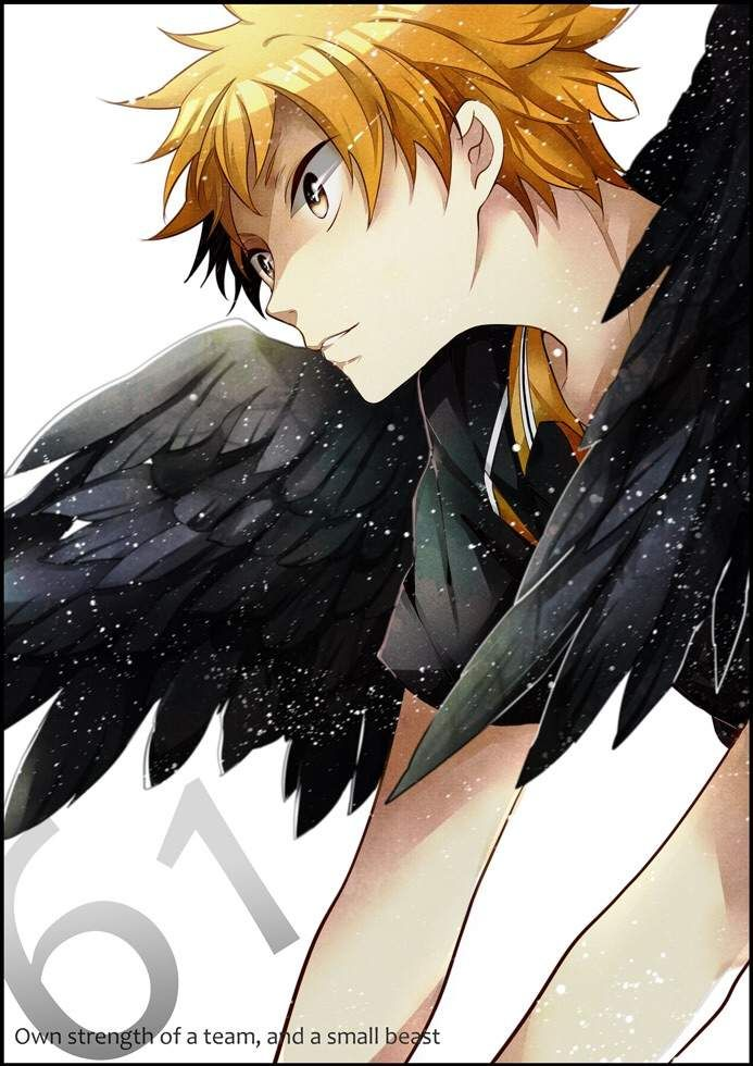 The Little King Crow   Anime Amino