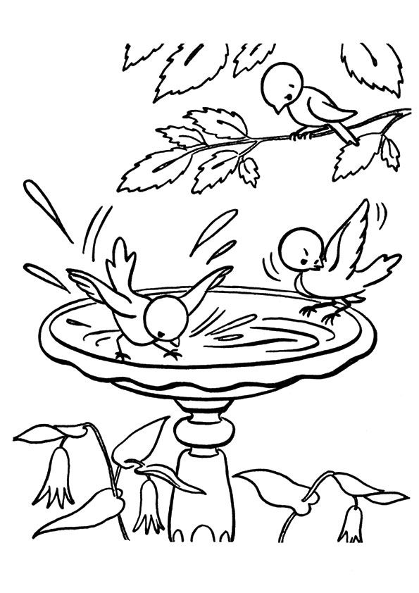print coloring image - MomJunction | Bird coloring pages ...