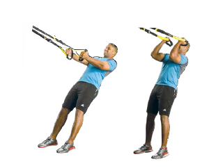 trx biceps curl stand facing builds strength in biceps and