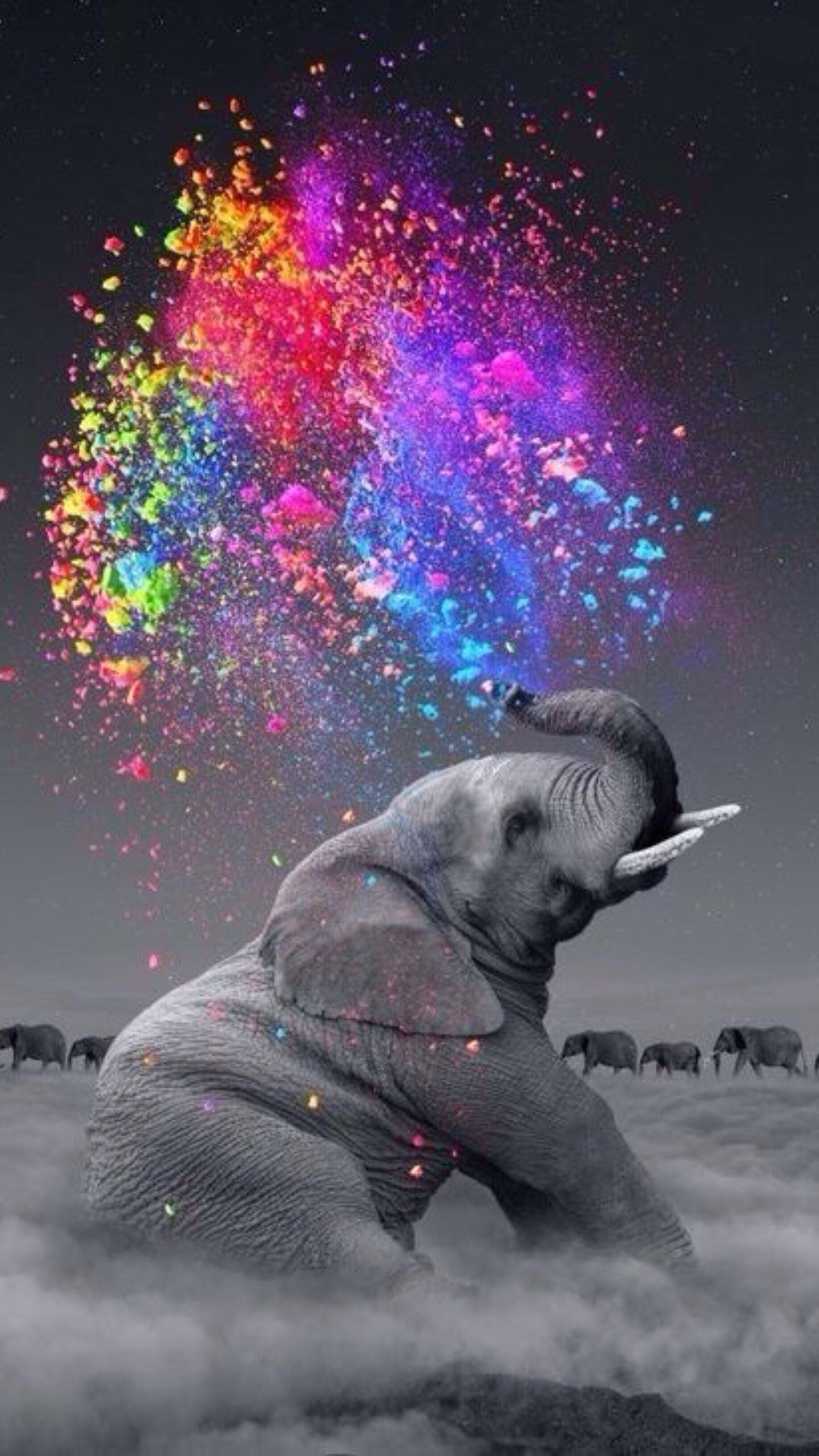 Pin By Michele On 9 16 Phone Elephant Art Elephant Pictures Elephant Photography