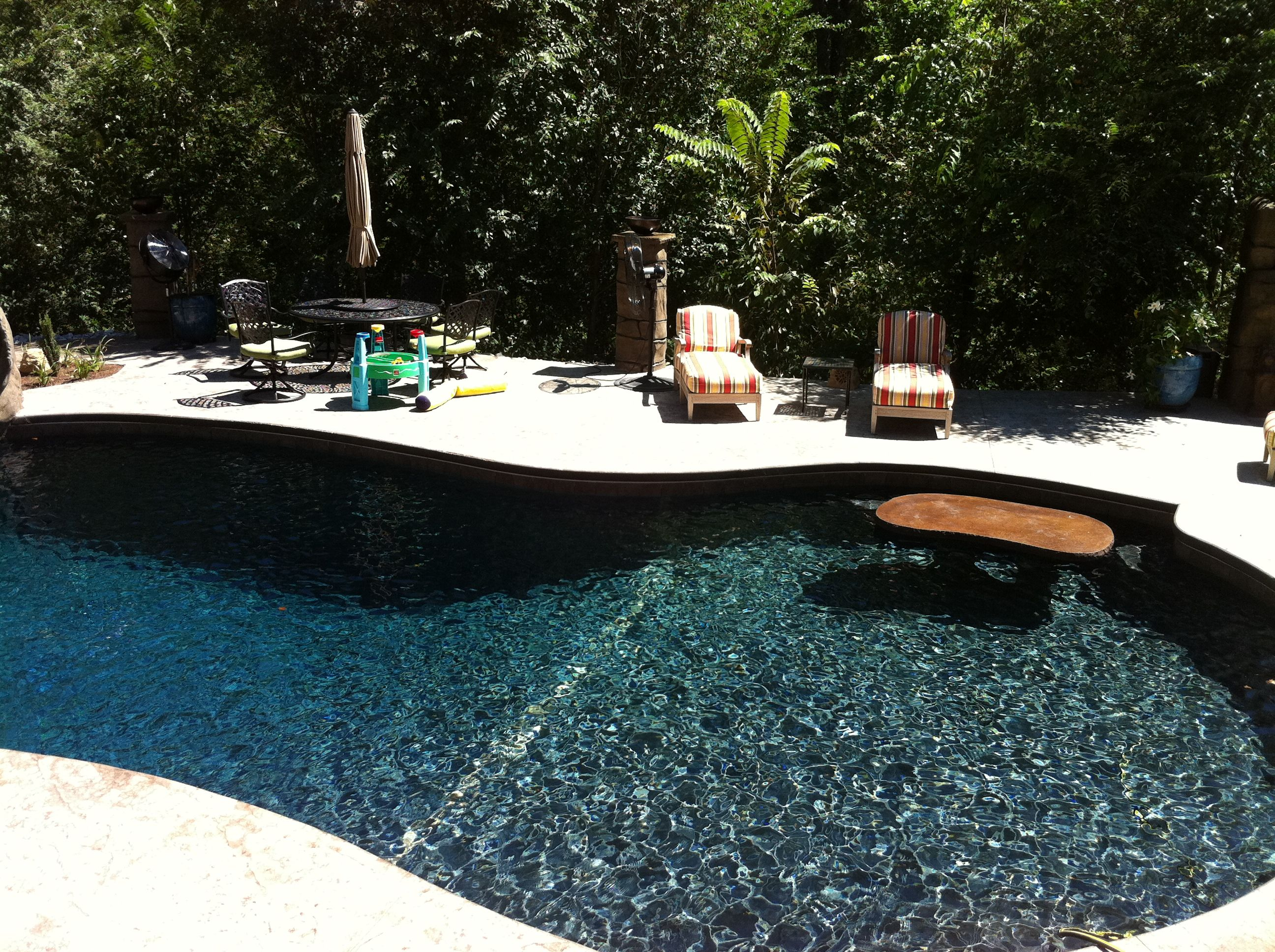 swimming pool concrete shotcrete builder black replaster ...