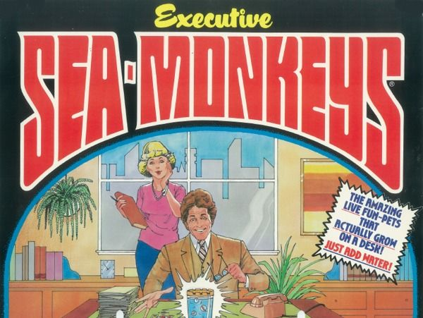 Sea Monkey Fund Raiser Sea Monkeys Pets Fundraising